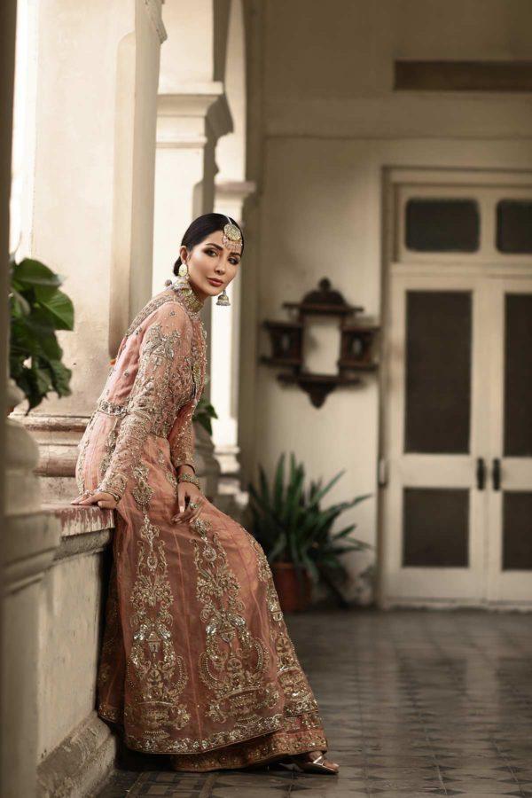 Sabeeka - English Rose Collection 2020 Swavo Collection